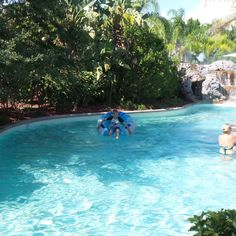 Lazy River at the Hilton Orlando Hotel, Florida, USA Orlando Resorts, Florida Usa, Sea World, Universal Studios, Hotel Reviews, Lazy, To Go, River, Disney