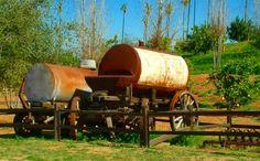 California Citrus State Historic Park, 160 acres dedicated to the preservation of orange groves! #ChooseRiverside