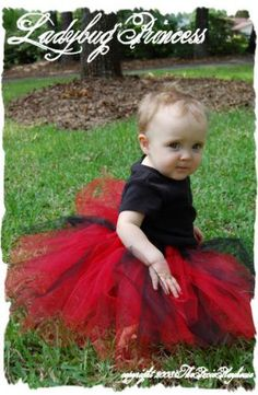 Google Image Result for http://pixieplayhouse.com/gallery2/d/560-2/ladybug%2Bprincess.jpg