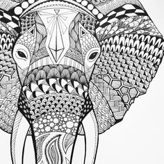Loads of Zentangle animals for you to draw inspiration from, and then make your own. Including links for animal outlines and zentangle pattern ideas. Doodle Art Drawing, Zentangle Drawings, Zentangle Patterns, Zentangles, Zentangle Art Ideas, Mandalas Painting, Mandalas Drawing, Zentangle Elephant, Zentangle Animal