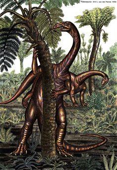 Plateosaurus by WillemSvdMerwe on DeviantArt