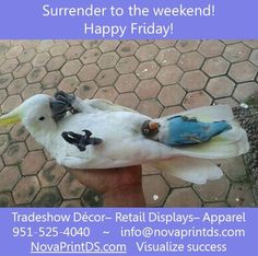 Another Friday is upon us. Have a great weekend! #sublimation www.novaprintds.com