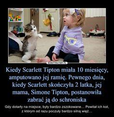 Kiedy Scarlett Tipton miała 10 miesięcy, amputowano jej ramię. Pewnego dnia, kiedy Scarlett skończyła 2 latka, jej mama, Simone Tipton, postanowiła zabrać ją do schroniska – Gdy dotarły na miejsce, były bardzo zszokowane… Powitał ich kot, z którym od razu poczuły bardzo silną więź… Skirt Mini, Feeling Down, Fun Facts, Haha, Cute Animals, Humor, Feelings, Memes, Funny