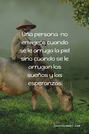 Imagen relacionada Martin Luther King, Frases Samurai, Yoga Tips, Movie Posters, Animals, Facebook, Paulo Coelho, Messages, Texts