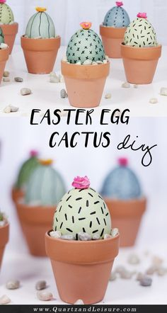 Easter Egg cactus perfect for Easter or Cinco de Mayo Cactus DIY Do you love succulents as much as I do? And are you looking for a fun project for your Easter eggs? Learn how to make these Easter egg cactus pots in today's super easy DIY post! Cactus Craft, Easter Cactus, Cactus Cactus, Cactus Diys, Easter Tree, Easy Easter Crafts, Easter Dyi, Easter Egg Basket, Easter Food