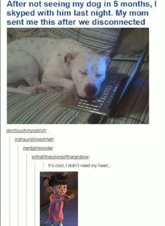Aw dog :(