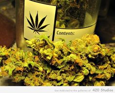 Wine Cheese and Cannabis Please
