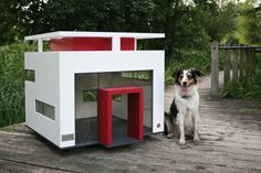 Loop Luxury Dog House - Dogs have it easier than ever nowadays thanks to designs like the Loop Luxury Dog House. The Loop Luxury Dog House is a highly portable and classy . Dog House Bed, Build A Dog House, Dog House Plans, House Beds, Modern Dog Houses, Cool Dog Houses, Pet Houses, Modern Homes, Small Houses