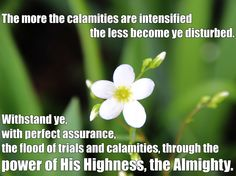 The more the calamities are intensified the less become ye disturbed. Withstand ye, with perfect assurance, the flood of trials and calamities, through the power of His Highness, the Almighty.  Baha'i Faith  Tablets of Abdul-Baha Source:http://holy-writings.com/index.php?a=RESULT=/en/Bahai%20Faith/1%20-%20Primary%20Sources/Abdul-Baha/Tablets%20of%20Abdul-Baha%20v1.txt=retaliate=0=1#phrase-0