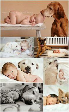 Amore tra bimbi e cani