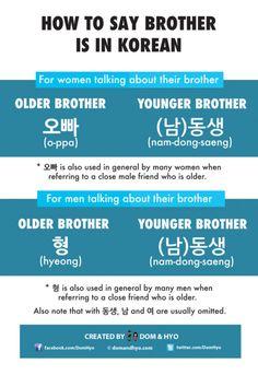 Korean Language Infographics – Learn Basic Korean Vocabulary & Phrases with Dom & Hyo Korean Words Learning, Korean Language Learning, South Korea Language, Learn Basic Korean, Korean Letters, Korean Phrases, Korean Quotes, Learning Languages Tips, Learn Hangul