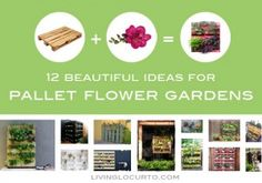 12 Beautiful Ideas for Pallet Flower Gardens