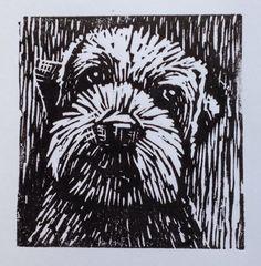 Linocut of 'Gimli' the border terrier. #printoctober Paul Smith