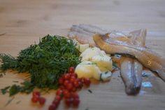 Γαύρος μαρινάτος ⋆ Cook Eat Up! Snacks Für Party