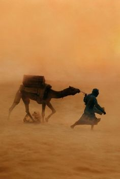 Sahara Desert Sandstorm, Photo by Steve McCurry Desert Dunes, Desert Life, Arabian Nights, People Of The World, Cool Photos, Deserts, Scenery, Images, Around The Worlds