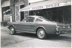 Mustang 1965 Vintage Shot from Fance