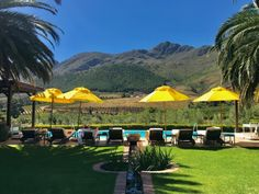 Adventures in South Africa Wine Tasting Series : the of the series is a lunch at La Residence, a beautifuly designed winery and hotel in Franchhoek. Wine Tasting, South Africa, Lunch, Patio, Explore, Adventure, Outdoor Decor, Design, Eat Lunch