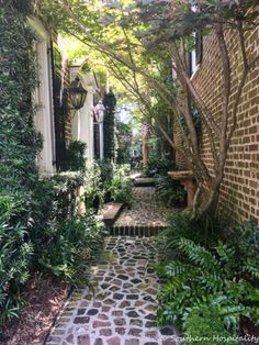 Homes of Charleston Charming Homes of Charleston - Southern HospitalityCharming Homes of Charleston - Southern Hospitality Small Courtyard Gardens, Small Courtyards, Outdoor Gardens, Side Gardens, Seiten Yards, Side Yard Landscaping, Landscaping Ideas, Walkway Garden, Charleston Gardens