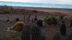 secretgardenbeach-lanzarote_82