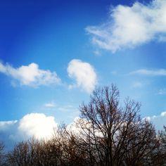 Un ciel bleu comme j'en ai pas vu depuis longtemps!
