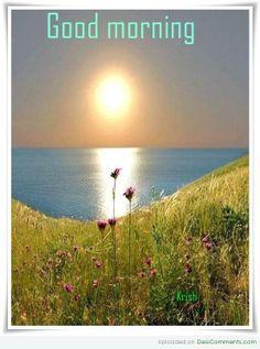Good Morning Sunshine ☼ on Pinterest | Good morning, Good morning ...