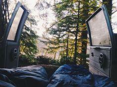 Tentporn Wald