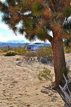 Kate's Lazy Desert trailer park, wanna go!