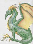 Imagination Expand 3 Dragon by `Scellanis on deviantART