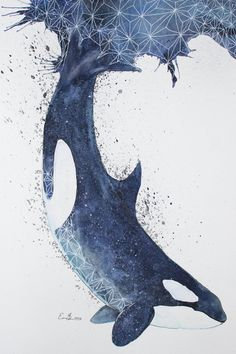 Original Watercolour Painting  Orca by ErikSterlingSherman on Etsy, €102.00
