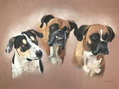 Recent Commission Completed - loved doing this portrait. Wildlife Art, Pet Portraits, Original Art, Dogs, Artwork, Animals, Work Of Art, Animales, Auguste Rodin Artwork