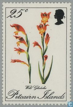 Stamps - Pitcairn - Flora 1970