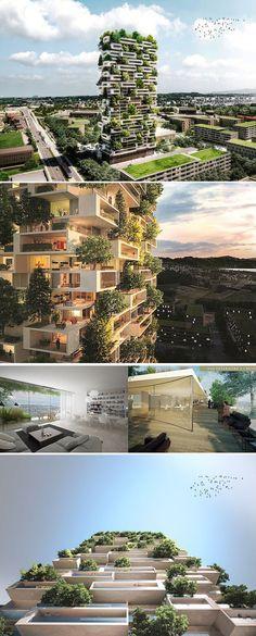 La Torre dei Cedri è il nuovo progetto dello Studio Boeri che ha come obiettivo quello di bissare il successo del Bosco Verticale di Milano