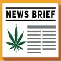 High Libido? Cannabis Smokers Have 20% More Sex, Researchers Find  ||  Forum: International Cannabis News Posted By: Ron Strider Post Time: 10-29-2017 at 08:41 PM 420 magazine best most trusted upto date world c... https://potads.blogspot.com/2017/10/high-libido-cannabis-smokers-have-20_29.html?utm_campaign=crowdfire&utm_content=crowdfire&utm_medium=social&utm_source=pinterest