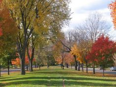 Fall Photo:  This Photo was uploaded by epiac1216. Find other Fall pictures and photos or upload your own with Photobucket free image and video hosting s...