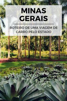 Veja nesse post uma ideia de roteiro para conhecer Minas Gerais de carro com toda a família: http://viagememdetalhes.com.br/roteiro-road-trip-em-minas-gerais/