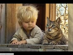 Cute Baby Boy With Pet Cat Picture