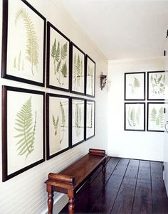 simple and clean  ///  Fern prints and a Regency bench lend presence to a small upstairs hall.   - HouseBeautiful.com