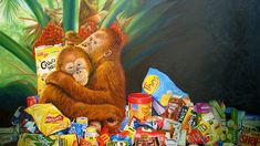 'Palm Oil and Pollution' by Jo V Fredriks 'http://www.abc.net.au/local/photos/2014/09/03/4080310.htm