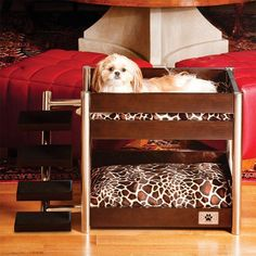 Seu cachorrinho precisa ter um espaço só dele, um local adequado para comer, descansar, dormir, fazer necessidades e até mesmo brincar. Clique na imagem e saiba como organizar o cantinho dos animais de estimação!