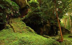 Moss path Japan