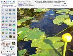 Pixenate Image Editor - Free- Online - Add effects, filters, clipart, remove red eye, smooth, shaped cutouts, etc. - http://pixenate.com/
