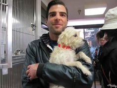 """Zachary Quinto Searches For A Pup To Adopt In """"Dog Eat Dog"""""""