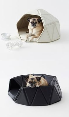Dog house that turns into a bed / Nendo