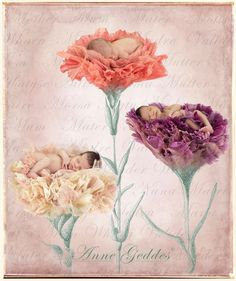Happy Mother's Day from CreativeLive and Anne Geddes