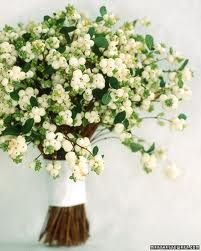Snow Berry, this is a fantastic choice for a winter wedding, they also come in a lite shade of pink.