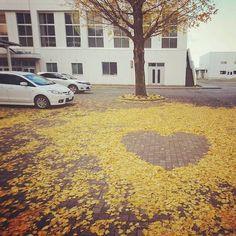 Tuyển tập những bức tranh tuyệt đẹp được vẽ nên từ lá vàng rơi và chổi - Ảnh 3.