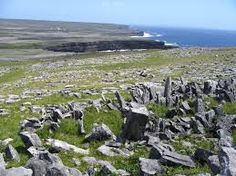 dun aengus - Google Search 500 Places