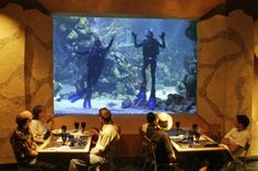 The Coral Reef at Living Seas Epcot - The front wall is an aquarium.... and divers come to say hello!