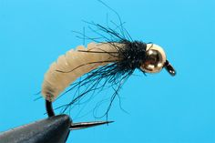 ADN (another deadly nymph)- by Lucian Vasies | | Hatches Fly Tying Magazine