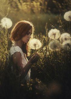 Девушка в поле с цветами, фотограф Давид Д